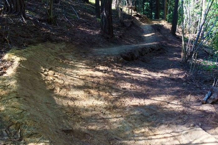 un sentiero di montagna specifico per un utilizzo dedicato alle mountain bike