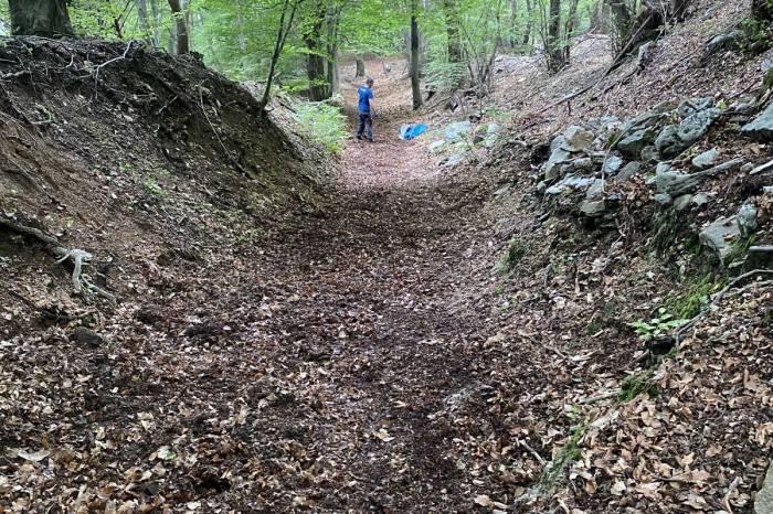 un sentiero di montagna coperto di foglie ed una persona che sta lavorando per pulirlo